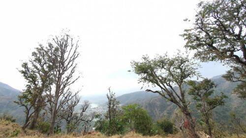 Rishikesh- Pratham